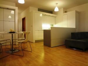 Mieszkanie do wynajecia w Poznaniu (6)